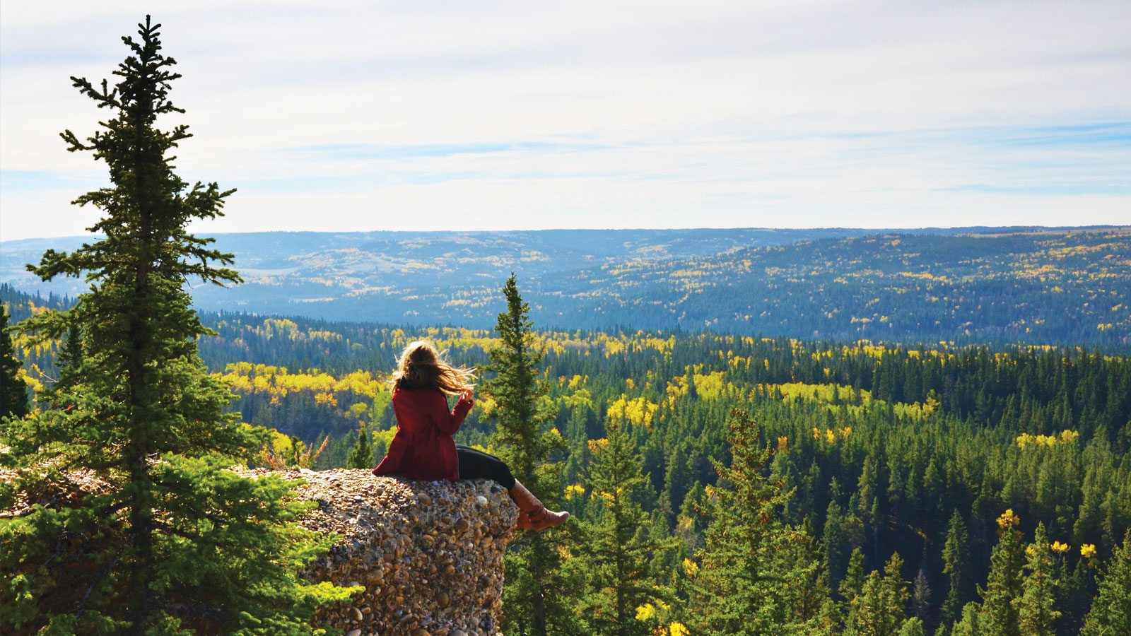 The From View Conglomerate Cliffs Within Cypress Hills Interprovincial Park Photo Ashlyn George