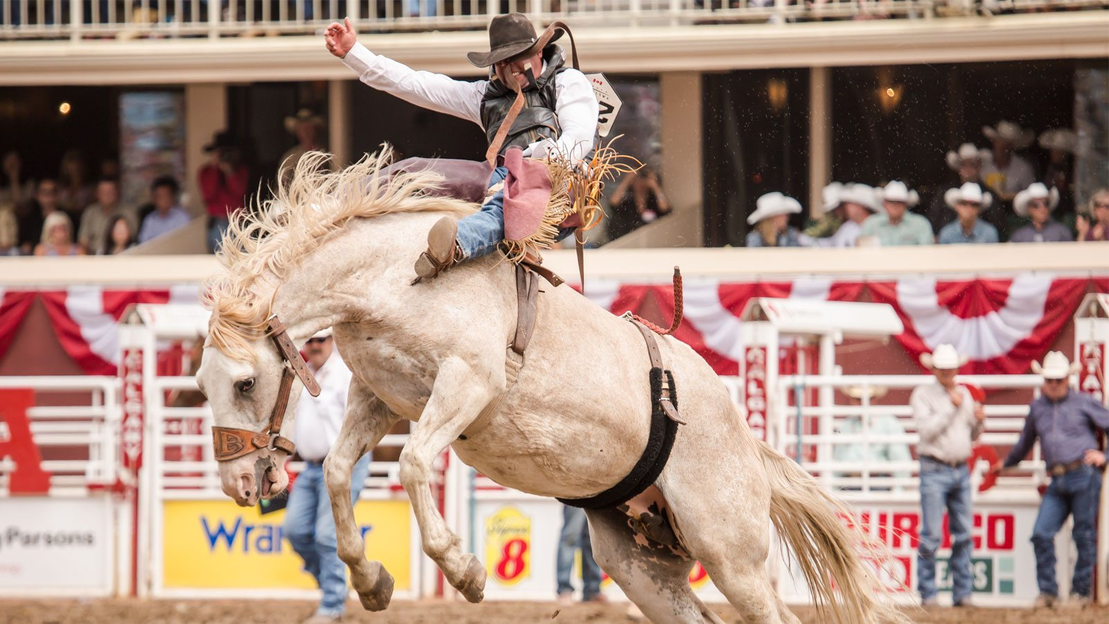 A Beginner S Guide To Alberta Rodeo Ama