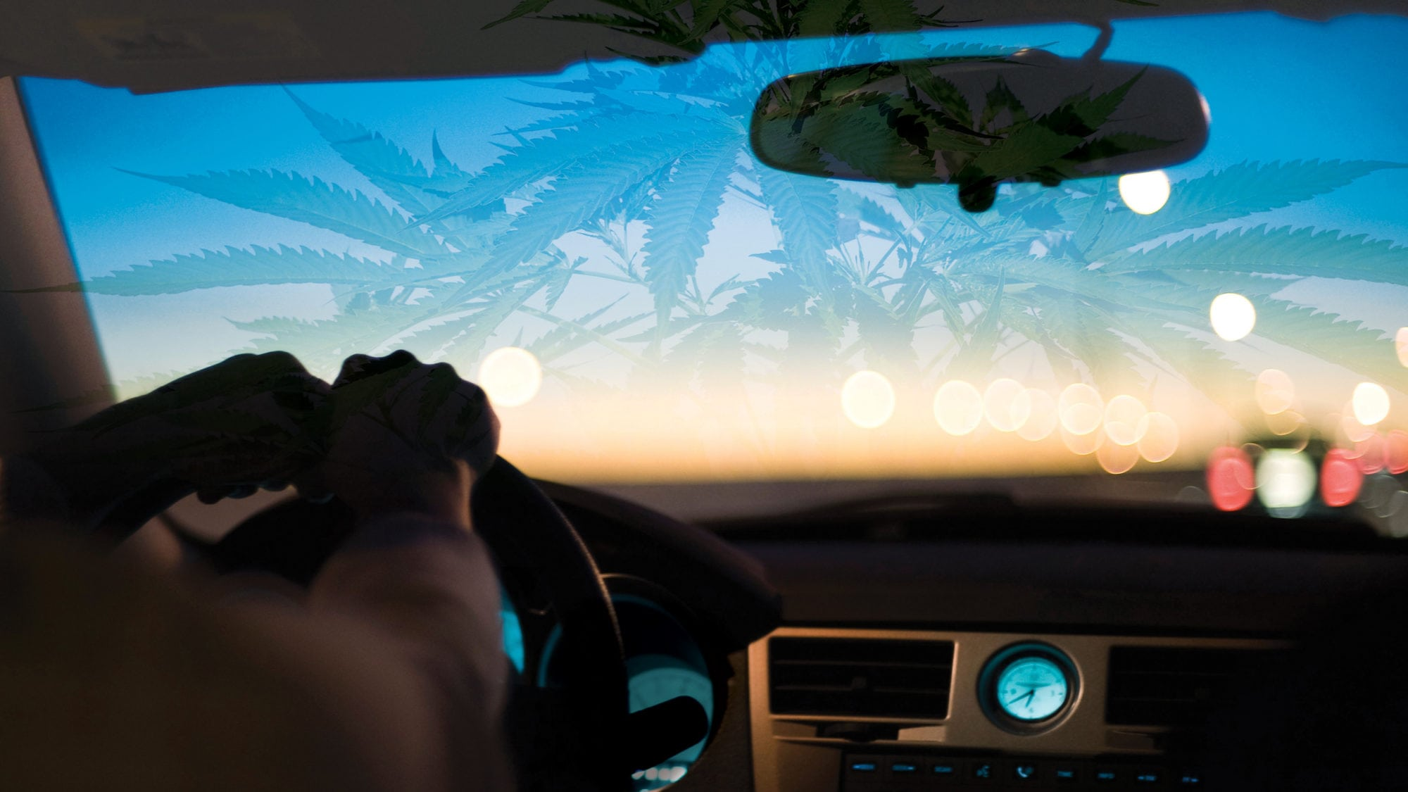 Pot Use Could Double Risk of Car Crash forecasting