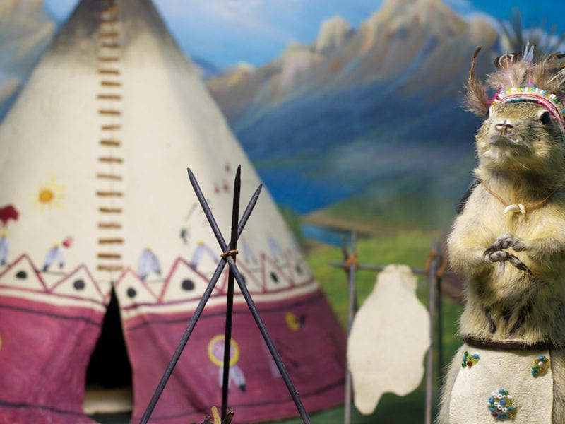 Discover 5 of the Most Unusual Museums in Canada