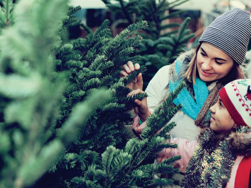 Super-Easy Ways to Make Your Holiday Season More Sustainable