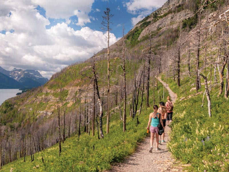 After a Devastating Wildfire, Waterton is Coming Back Strong