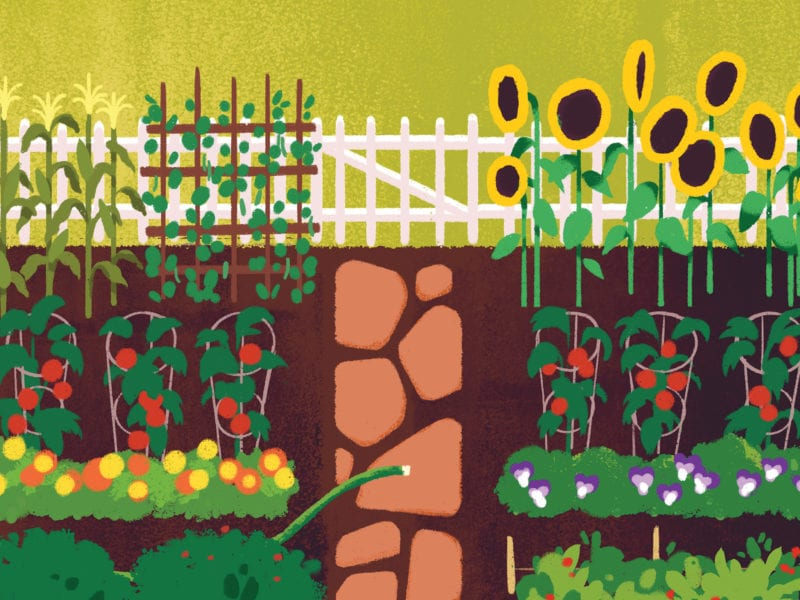 How to Plan a Garden: Our Expert Advice for Spring Planting