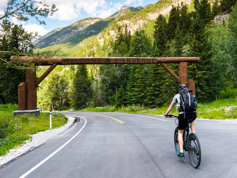 Free Ride: What You Need to Know About Biking the Bow Valley Parkway